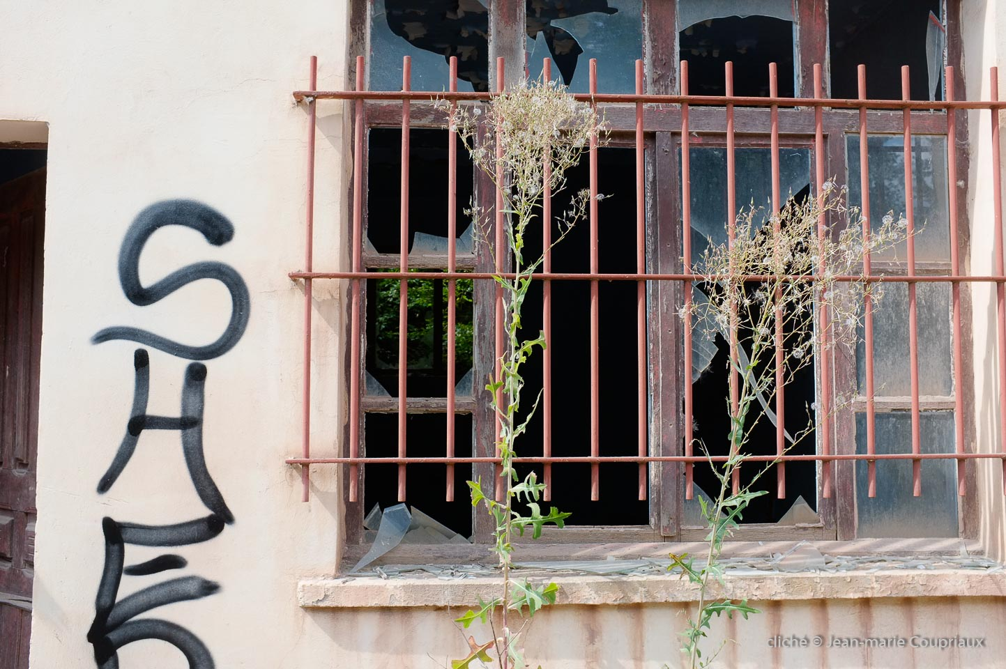 Saulnot-2013-8.jpg
