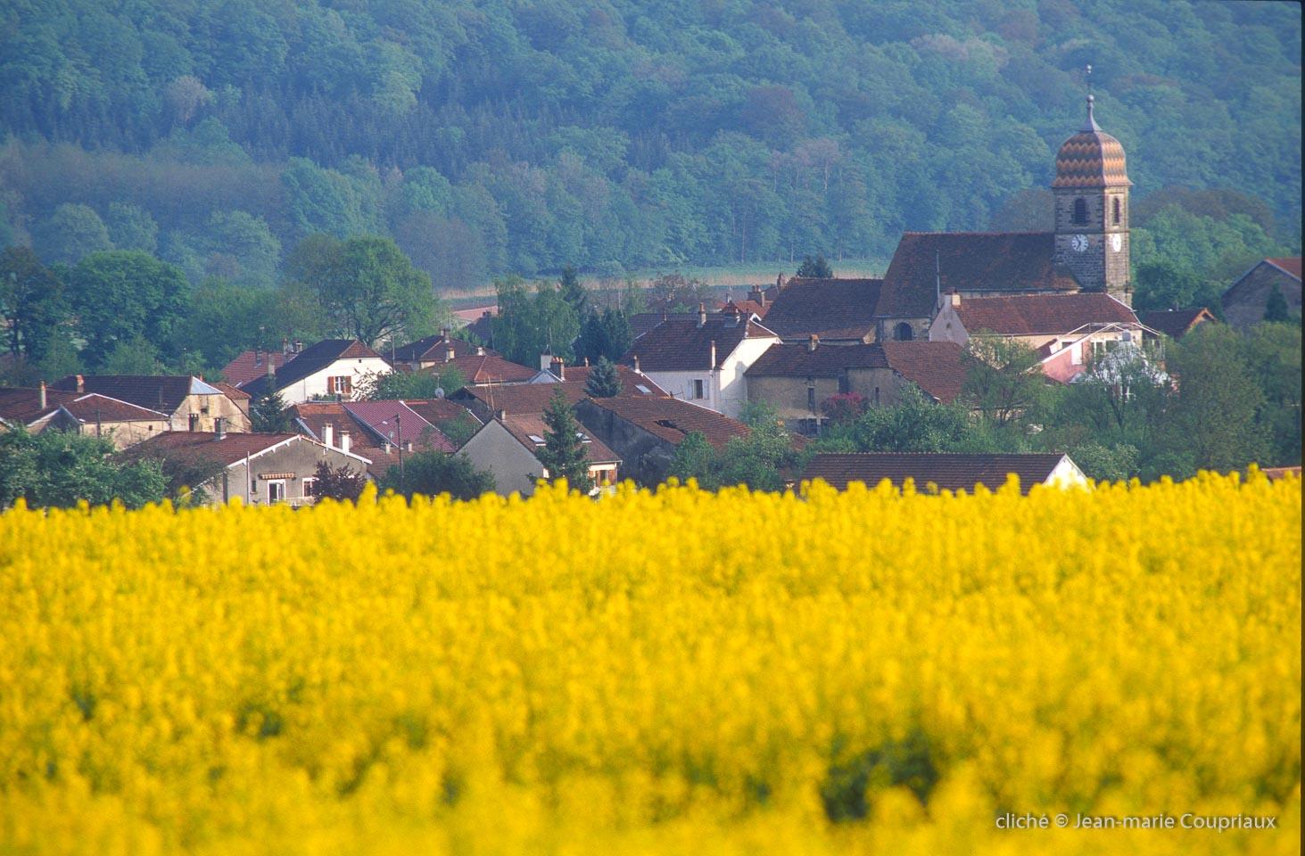 Senoncourt-6.jpg