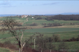 Plainemont