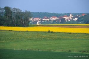Saint-Remy-7