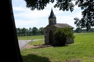Sellesz_2011-9