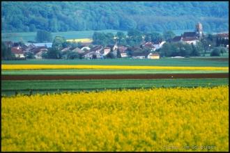 Senoncourt-5.jpg
