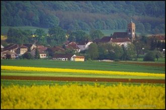 Senoncourt-8.jpg