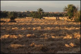 2005-Maroc-399