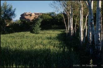 2005_Mgoun-269