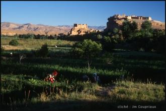 2005_Mgoun-271