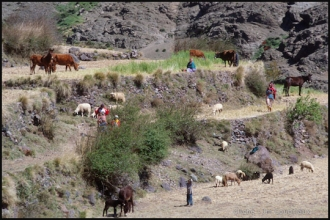 405-Maroc-1996-98