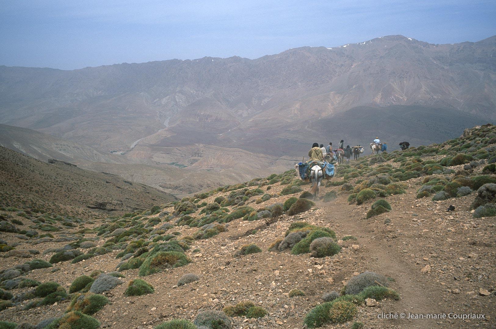 2005_Mgoun-157