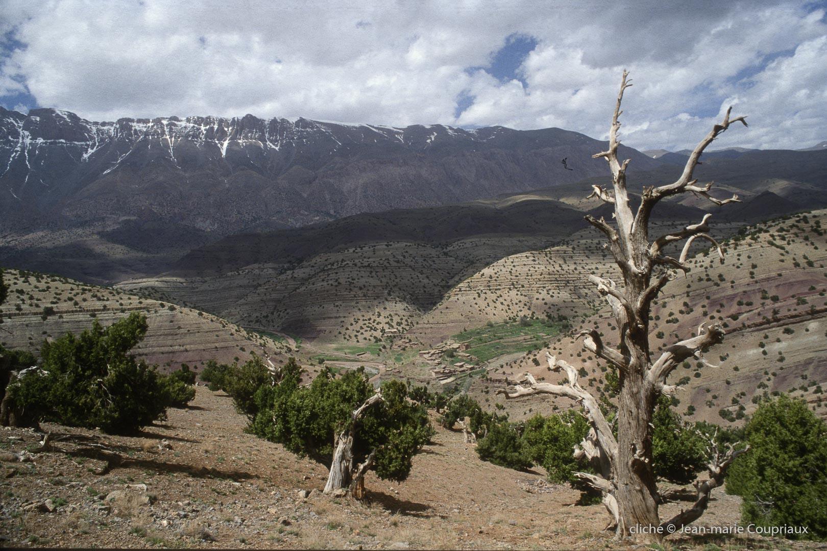 1996_4_Mgoun-Ouzirimt-258