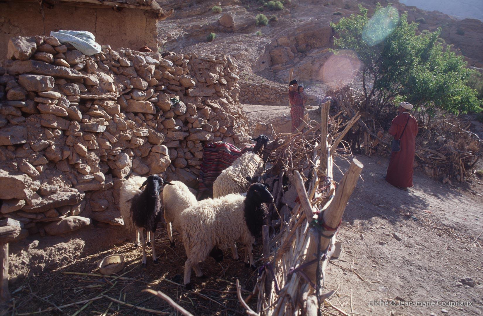 1996_6_Mgoun-Tiranimine-BouTaghar-732