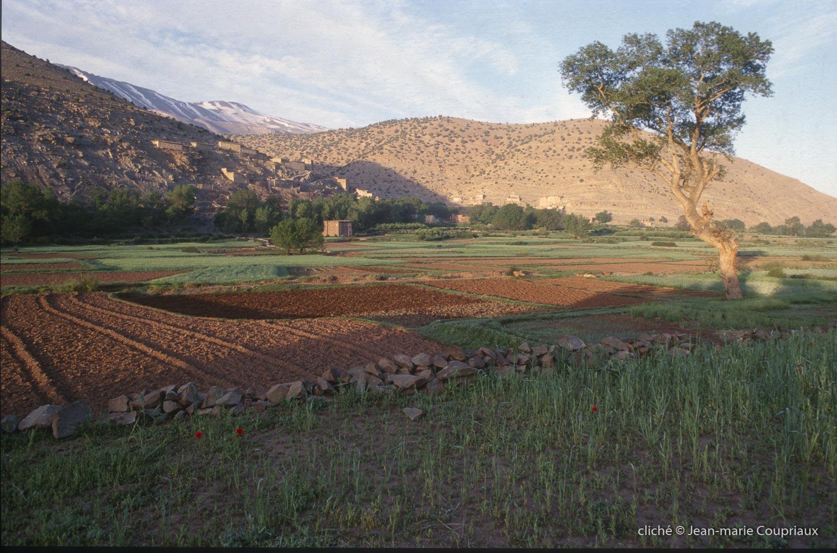 1997_Mgoun-Tabant-18