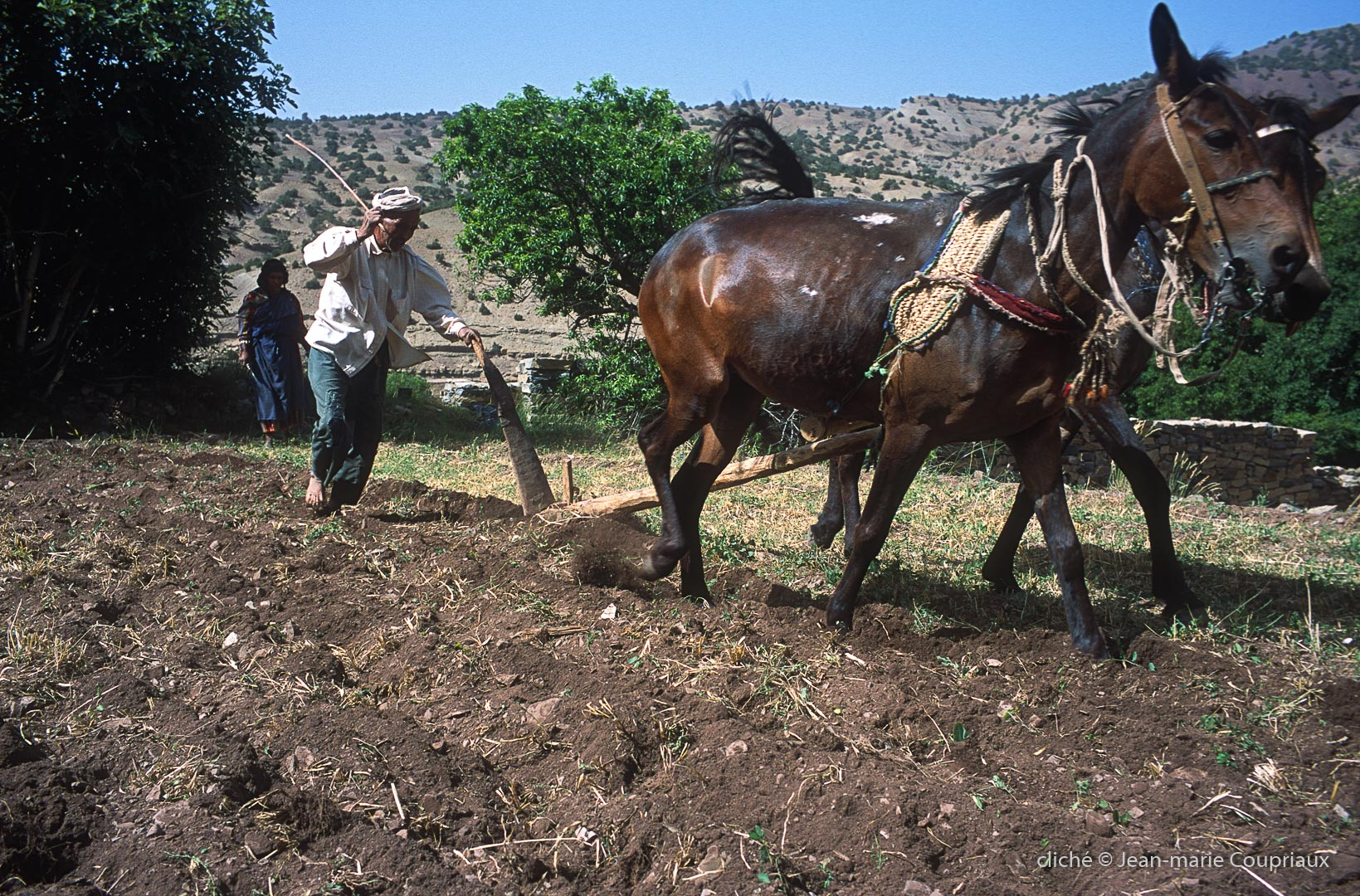 1997_Mgoun-Tabant-30