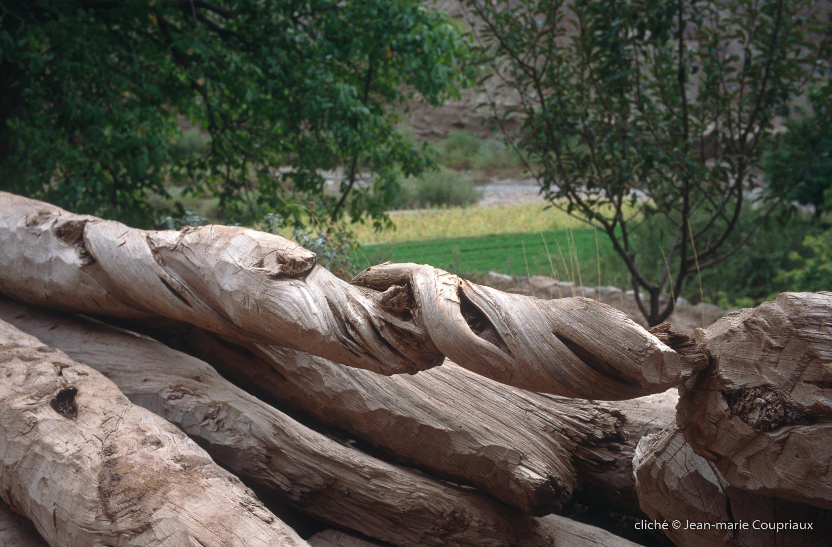 2006_Mgoun-102