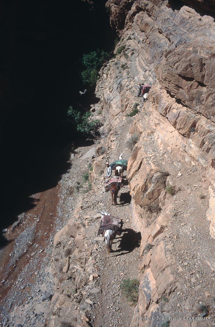 2006_Mgoun-146