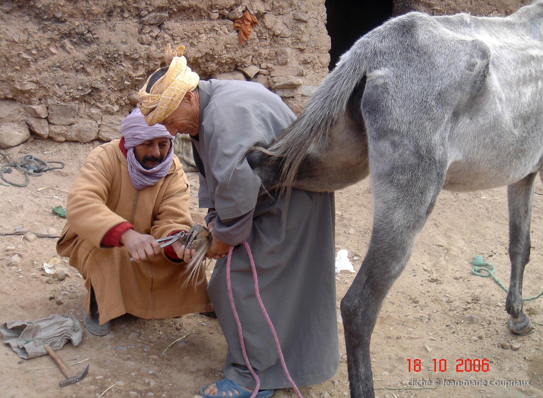 2006_Mgoun-sony-273