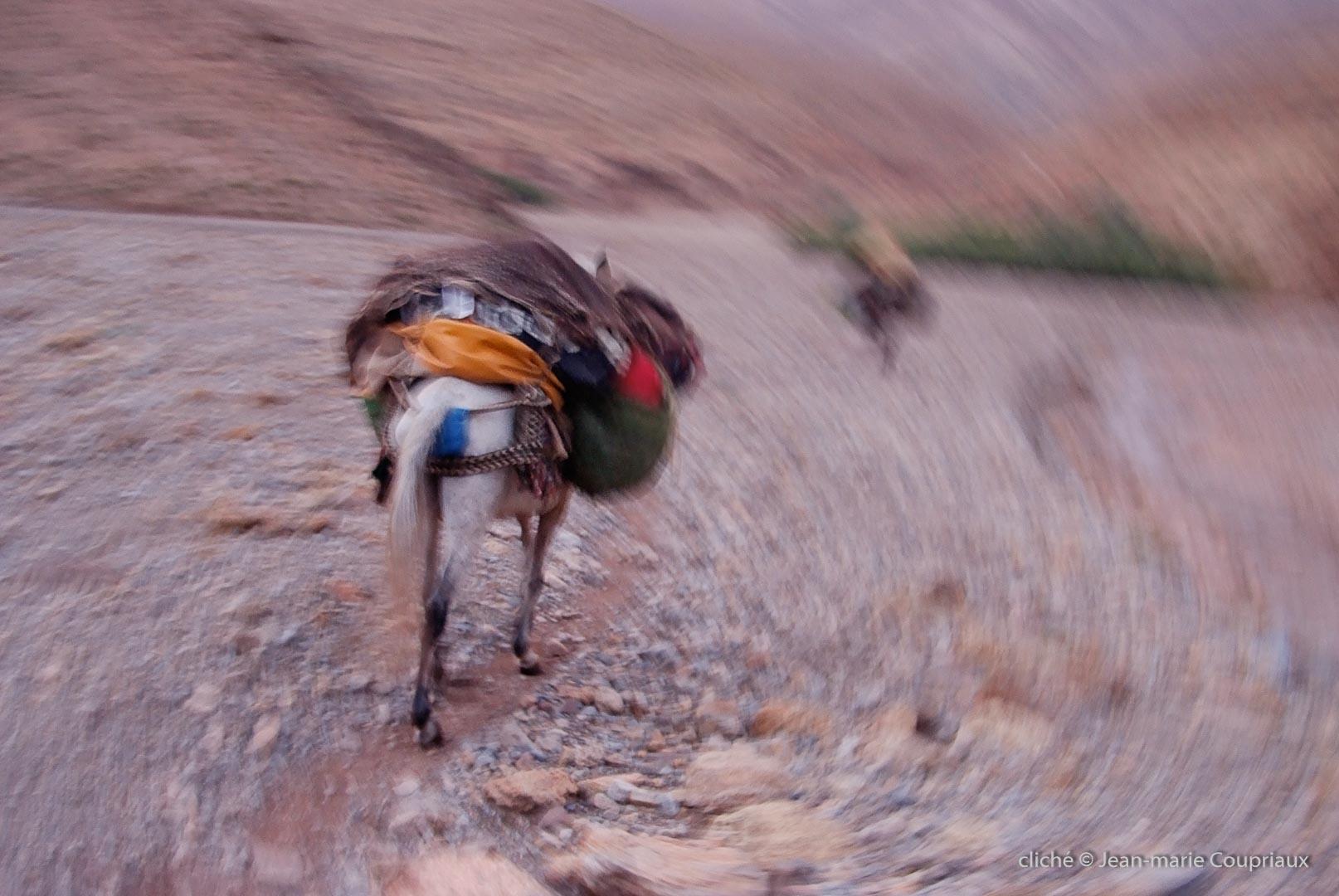 472-Maroc-2002a2013