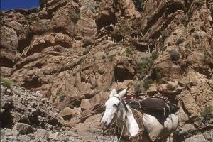 1996_6_Mgoun-Gorges-691