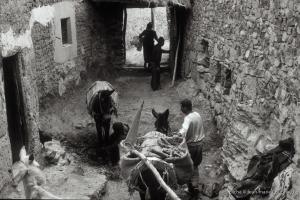 1997_mgoun-scala-14