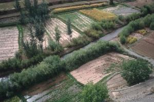 2006_Mgoun-86