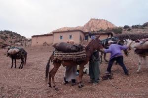 2008_Maroc-405