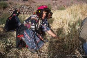 436-Maroc-1999-2001