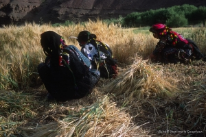 437-Maroc-1999-2001