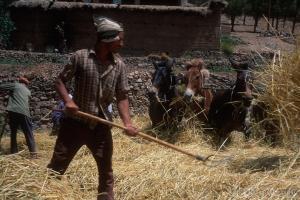 438-Maroc-1999-2001
