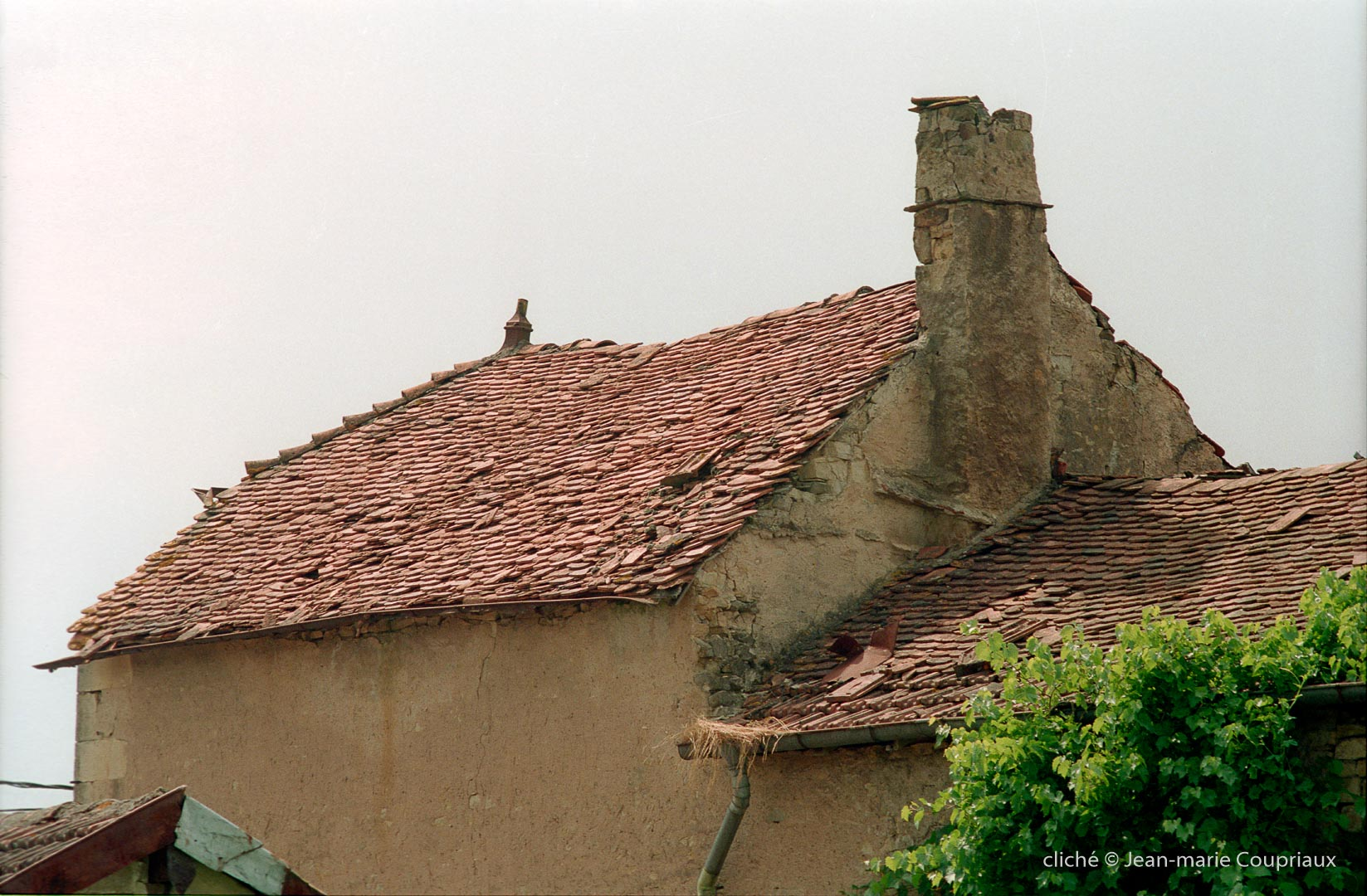 1996_Menoux-206