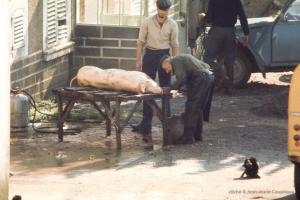 1974_Menoux-52