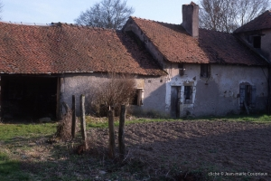 1999-Menoux-36-11-1