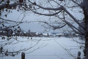 1999_Menoux-hiver-13