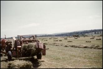 1966_Menoux-agri_381-1.jpg