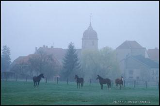 nature-matin-1998-116.jpg