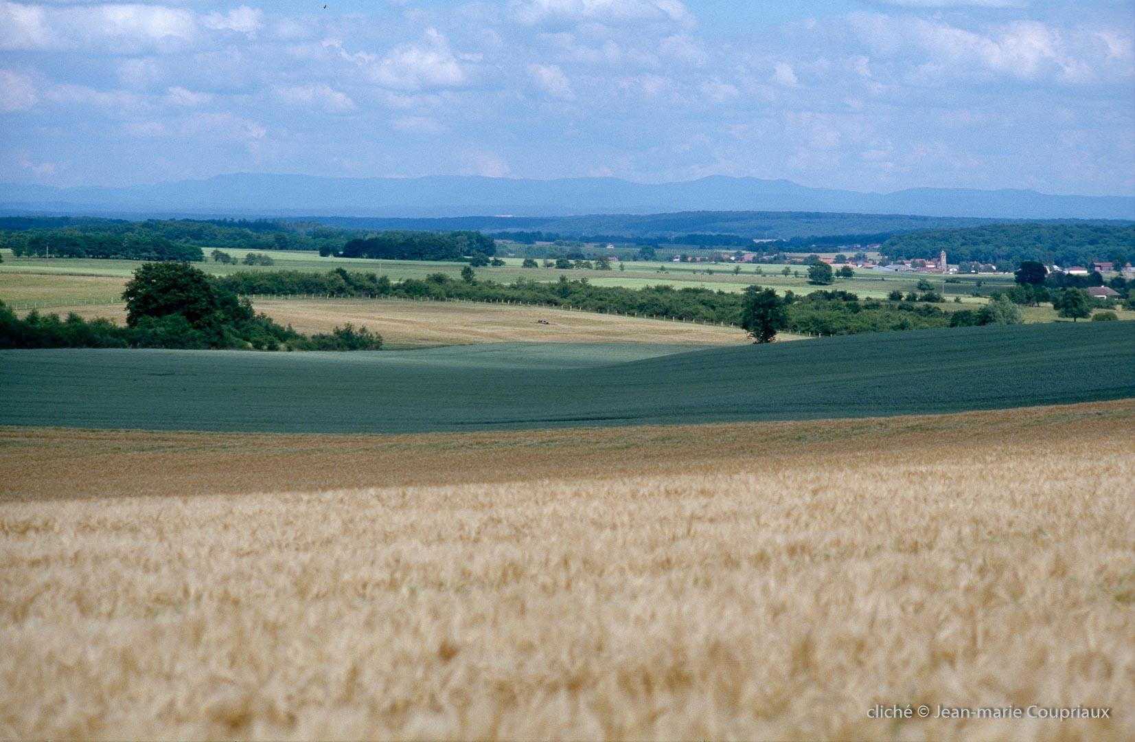 2000-Menoux-paysages-116