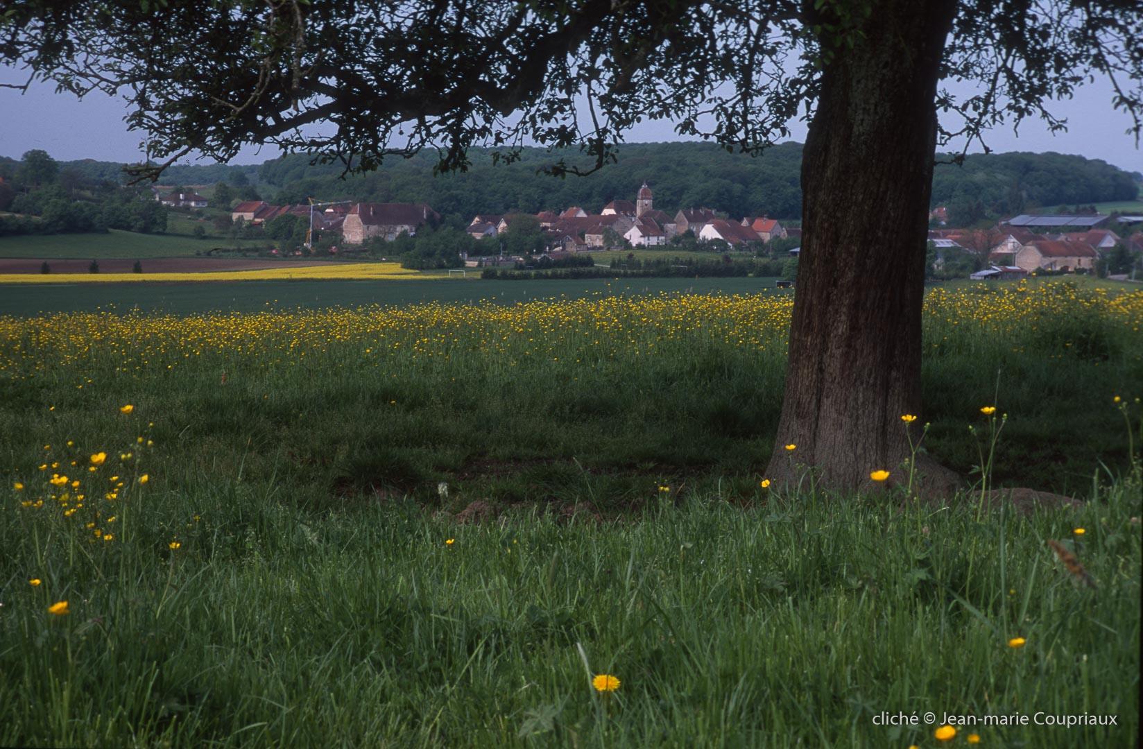 2000-Menoux-paysages-18