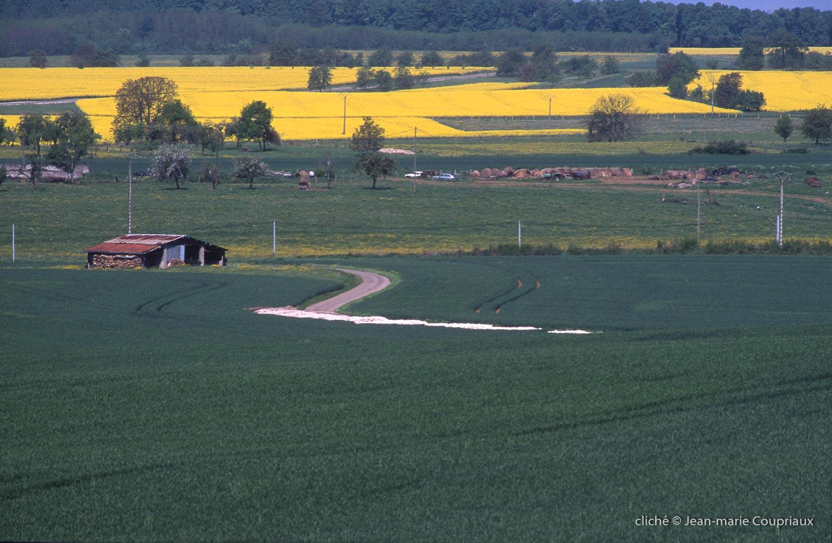 2000-Menoux-paysages-32