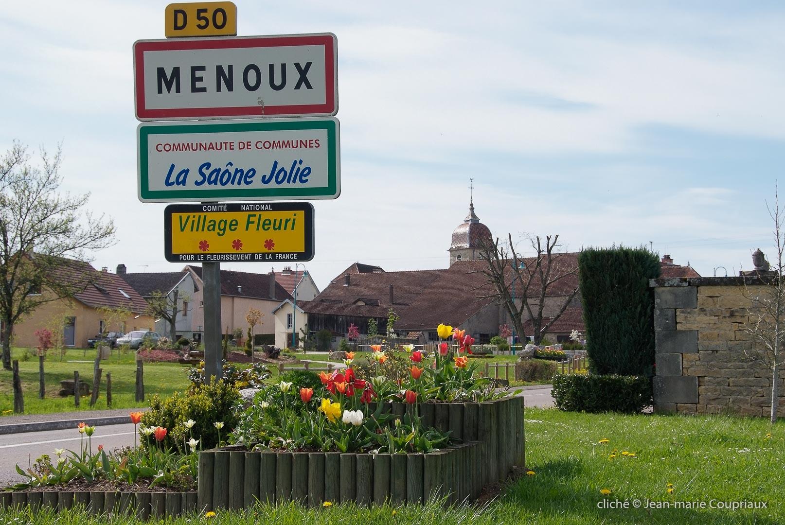 2008_menx-fleurs0050