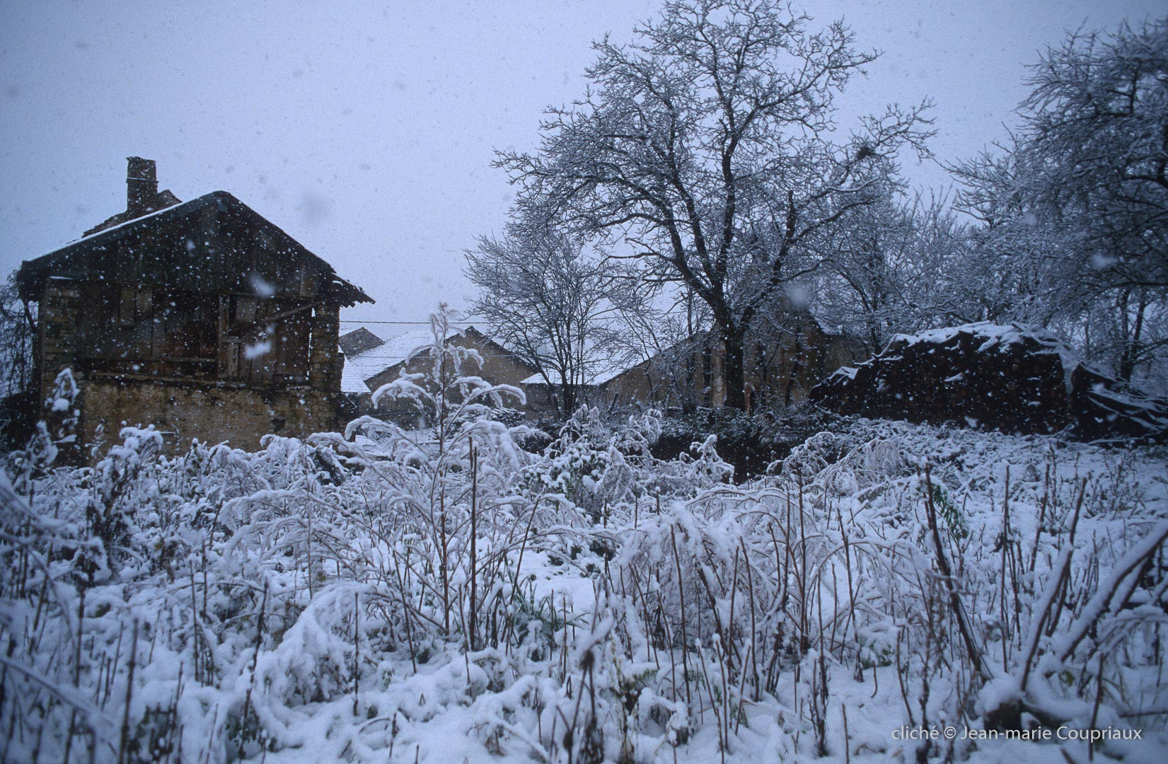 Menoux_hiver_038