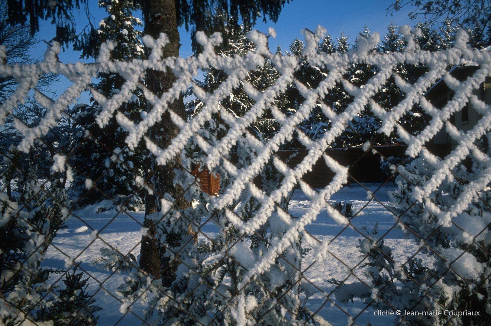 Menoux_hiver_084