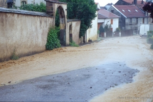 2003_Menoux11
