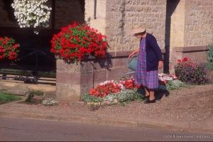 Menoux-fleurs-44