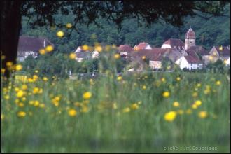 2000-Menoux-paysages-1.jpg