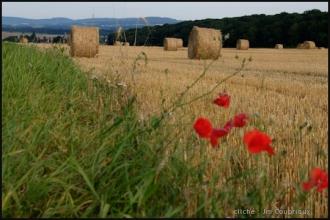 2000-Menoux-paysages-12.jpg