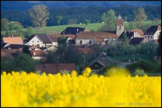 2000-Menoux-paysages-20.jpg