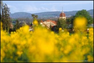 2000-Menoux-paysages-24.jpg