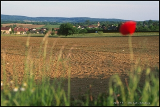 2000-Menoux-paysages-67.jpg