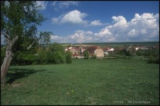 2000-Menoux-paysages-78.jpg
