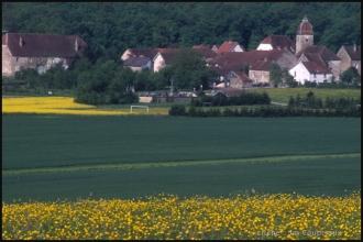 2000-Menoux-paysages-9-1.jpg