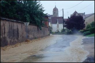 2003_Menoux14.jpg