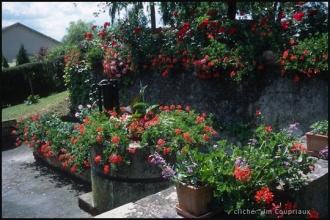 2004_Menoux31.jpg